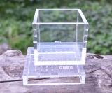 Étalage acrylique de fabrication de reptile de cas d'exposition acryliques de reptile