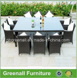 Tableau et présidences de meubles de jardin de 10 Seaters