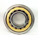 Une seule rangée de roulement à rouleaux cylindriques complet nu1009
