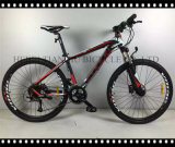 Neues Arrival China Made Cer Passsed Mountain Bike Bicycle, MTB für Sale