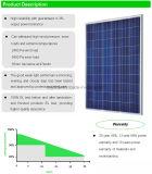 pour panneau solaire solaire de l'utilisation 250W de système le poly