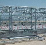 Geflügel bringen für Stahlkonstruktion-Pflanze unter