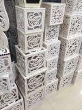 Panneau de Module de PVC de devise de vente en gros d'usine de la Chine