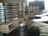 Tira del acero inoxidable de la alta calidad (304 304L 316 316L 310S)