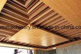 PE pp &Wood van pvc de Lijn van de paneelUitdrijving