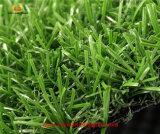 Gazon artificiel d'herbe du football de Non-Remplissage avec la conformité de GV