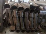 Enrollamiento de pierna propenso del tubo del equipo comercial D-Shaped de la aptitud Xf09
