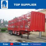 Het Voertuig van de titaan - de Semi Aanhangwagen van het Vervoer van de Container van de Comités van de Muur van de Aanhangwagen van de Lading