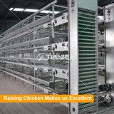 2017のデザイン鶏によって使用される家禽自動挿入システム