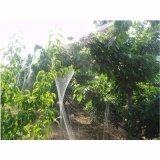 チェリーまたは果樹のための紫外線扱われた反鳥の網