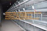 H Apparatuur van de Kooi van de Kip van de Laag van het Frame de volledig Automatische