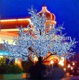 Luz popular da árvore de cereja do diodo emissor de luz do projeto