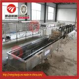 Máquina de lavagem do alimento da limpeza profissional da fruta e verdura da bolha
