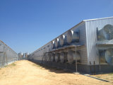 Huis van het Landbouwbedrijf van het Gevogelte van het Staal van het Frame van de hete ONDERDOMPELING het Gegalvaniseerde (kxd-SCH1502)