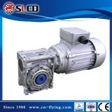 Wj (NMRV) Serien-Höhlung-Welle-Endlosschrauben-Gang-Motoren für Maschine