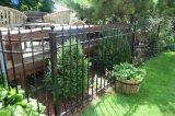 鉄のパネルと囲う装飾的な電流を通された錬鉄の塀の/Blackの粉のコーティングの鋼鉄庭