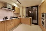 Gabinete de cozinha Home excepcional Yb1709041 da mobília do projeto 2017 novo
