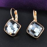 Oorring van de Juwelen van de Vrouwen van het Kristal van de haak de Achter Grijze Vierkante Trendy