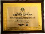 La Chine volet abrasif les fabricants de disque