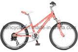 Bikes Bike/горы 20inch 6speed MTB/велосипеды/подвес горы сбывание Bike/Bike горы