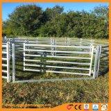 Горячий DIP оцинкованный порошковое покрытие крупного рогатого скота во дворе ограждения
