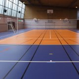 4.5mmの余暇の開催地のための多目的処置の床システム