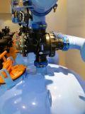 フィルター機械または自動車3シリンダー二重区域48のインチの砂媒体のろ過システム/3シリンダー