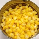 Núcleo de maíz dulce conservado grado superior