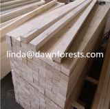Houten LVL Plywood/LVL met Beste Prijs