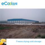 Elevada capacidade de grande tamanho Super Baixa Temperatura de armazenamento a frio para congelar comida de secagem