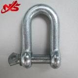 Stainless Steel를 가진 JIS Standard Commercial Type Shackle