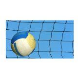 Het aangepaste Volleyball van de Kleur pp Netto voor Professionele Trein