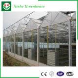 Estufa de vidro agricultural da multi extensão de 2017 projetos com sistema refrigerando