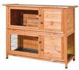 Camera di due piani del coniglio