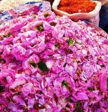 Huile aromatique pour Rose Huile essentielle de l'extracteur