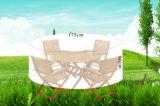 Coperchio della mobilia del coperchio della presidenza del coperchio della Tabella