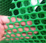 HDPE 플라스틱 메시, 플라스틱 편평한 그물세공, 닭 플라스틱 그물세공