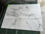 専門の贅沢の磨かれたイタリアのCalacattaの白い大理石の床タイル