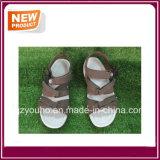 Il sandalo di colore del Brown calza all'ingrosso
