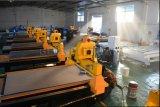 Europa-Qualitäts3d CNC-hölzerner Fräser 1325 mit Cer, SGS-Bescheinigung