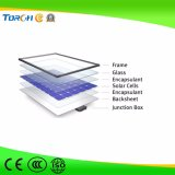 Indicatore luminoso di via solare della Cina 30W -60W IP65 LED di alta qualità con il prezzo poco costoso