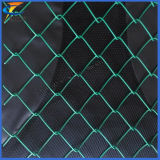 9 Gauge Diamond PVC Coated Chain Link Wire Mesh
