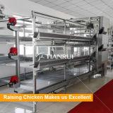 Le poussin automatique de bébé de la Chine met en cage le prix de matériel d'aviculture