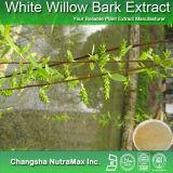 Extrait de l'écorce Powdersalicin Williow rouge 15%-98% Fournis par 3W