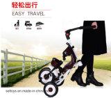 China 4 in 1 Driewieler van de Jonge geitjes van de Baby met de Kinderwagen van de Wandelwagen van de Baby van de Staaf van de Duw