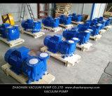pompe de vide de boucle 2BV6161 liquide pour l'industrie de pharmacie
