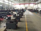 CNC di Torno della macchina del tornio di CNC dalla Cina (JD32/CK6132)