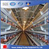Tipo H granja avícola del mejor precio de la capa de huevo jaulas de pollo