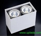 Благодаря вандалозащищенному поверхностного светодиодные индикаторы вниз 60W (UPL-GDL-2x30W-SM)