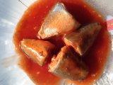 Ingeblikte Fish in Tomatensaus